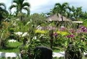 巴厘岛 Pura Puncak Penulisan寺